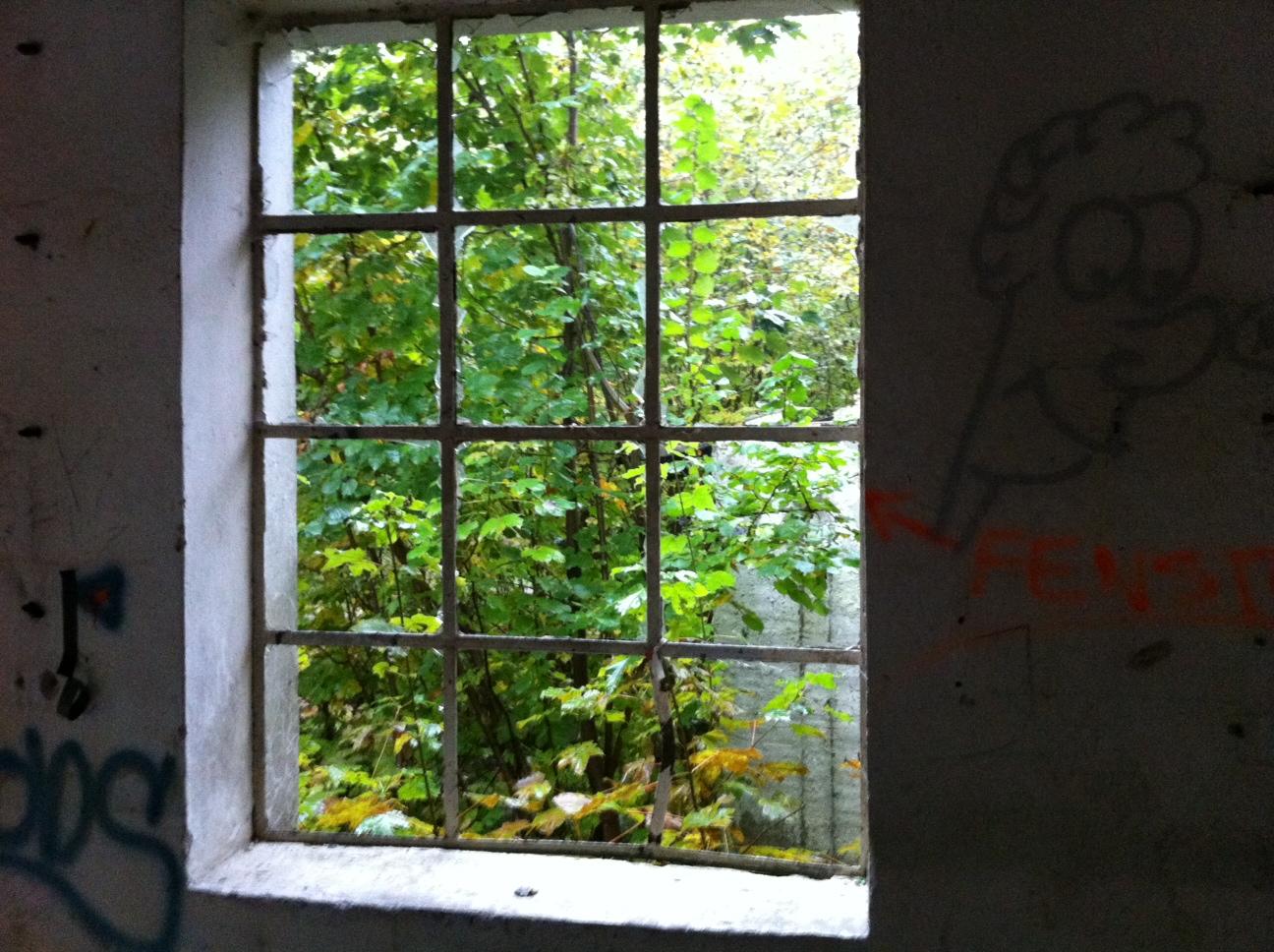 Ein altes Fenster dient als Muster